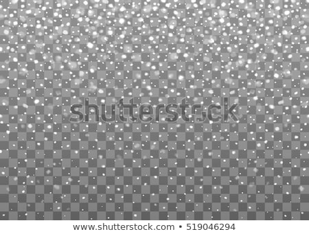 Foto stock: Inverno · neve · transparente · queda · floco · de · neve