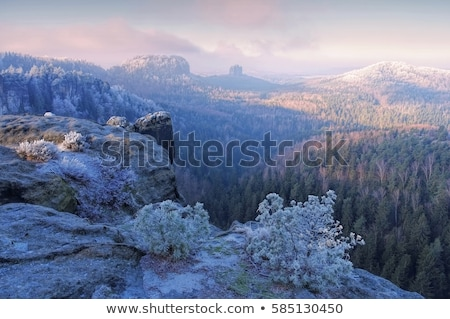 elbe sandstone mountains in winter viewpoint domerker stock photo © lianem