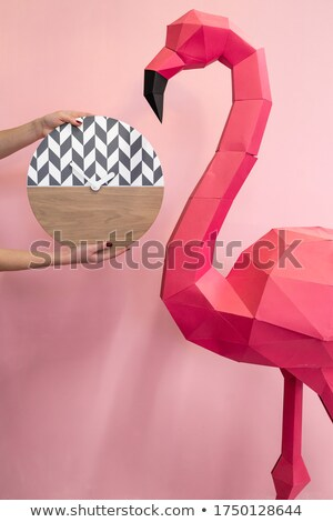 watch pink flamingos Stock photo © adrenalina