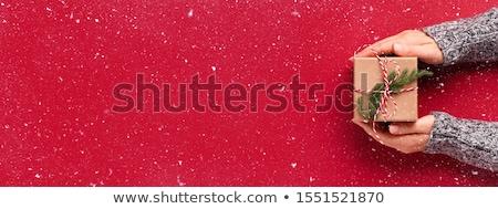 manos · hermosa · caja · de · regalo · femenino · regalo - foto stock © chesterf