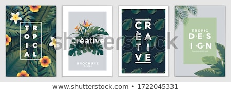 summer banner with tropical leaves stock photo © cammep