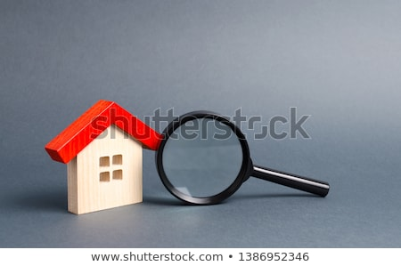 House search with magnifier Stock photo © biv
