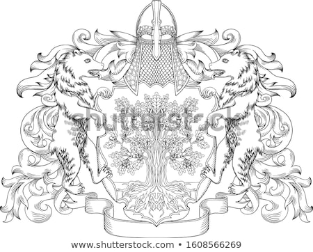 pajzs · címer · oroszlán · kabát · karok · embléma - stock fotó © krisdog