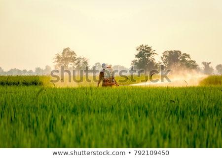 Bio veszély munkás farm portré maszk Stock fotó © IS2