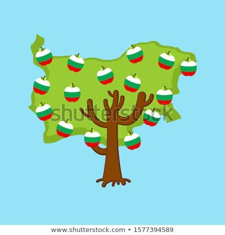 Hazafias almafa Bulgária térkép almák zászló Stock fotó © popaukropa