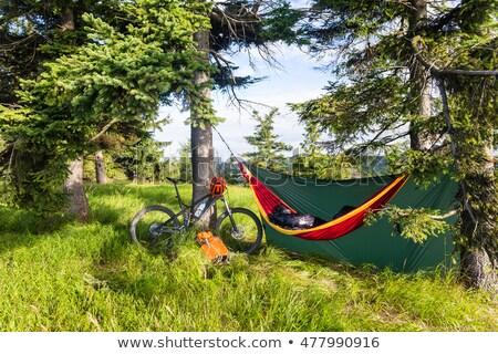 camping · Polônia · tenda · acampamento · lazer · ao · ar · livre - foto stock © blasbike