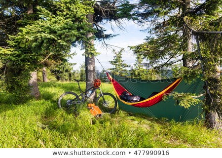 Camping with hammock  in summer woods on bike travel  Stock photo © blasbike