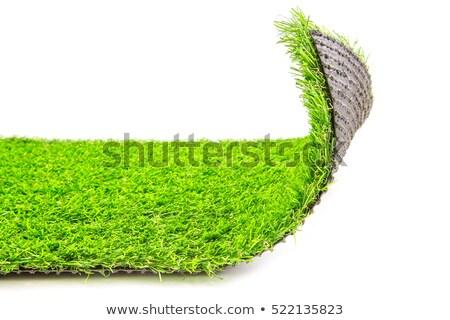 Vert herbe artificielle herbe modèle domaine étage Photo stock © Zerbor