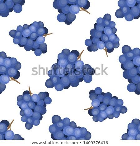 lumineuses · été · juteuse · raisins · cartoon - photo stock © yopixart