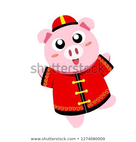 Cartoon свинья одежды черно белые иллюстрация Сток-фото © bennerdesign