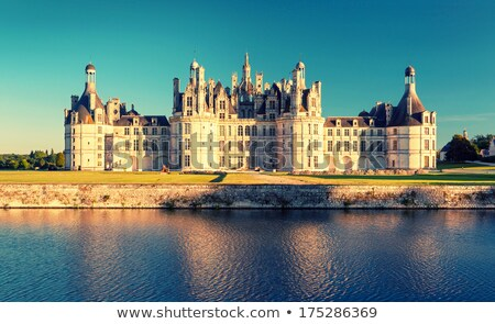 Chateau de Chambord, panoramic view Stock photo © tilo