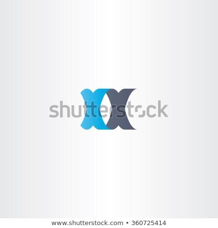 double letter x logo xx vector icon stock photo © blaskorizov