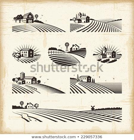 Windmill and Farm Landscape Vector Illustration Stock photo © robuart