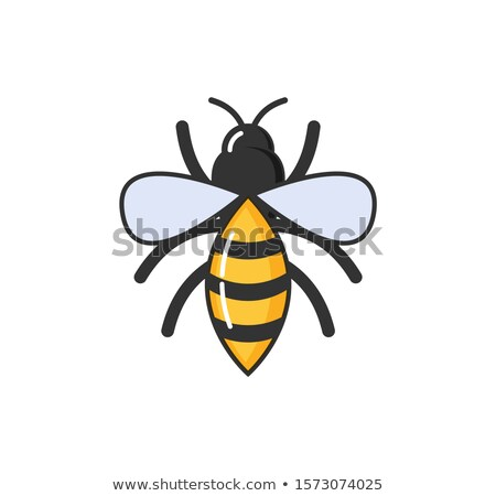 Allergy Hypersensitivity Bee Sting, Fly with Wings Stock photo © robuart