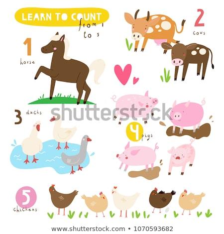 numbers set with cute farm animals Stock photo © izakowski