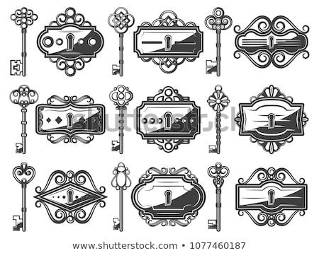 Kulcs antik dekoratív terv monokróm vektor Stock fotó © pikepicture