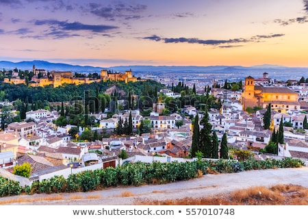 表示 アルハンブラ宮殿 スペイン パノラマ 庭園 空 ストックフォト © borisb17
