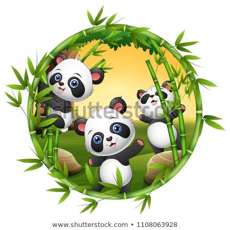 Cartoon baby panda giocare albero sorriso Foto d'archivio © tigatelu