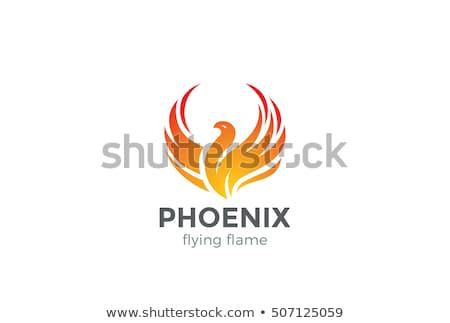 Phoenix vector icon illustratie ontwerpsjabloon ontwerp Stockfoto © Ggs