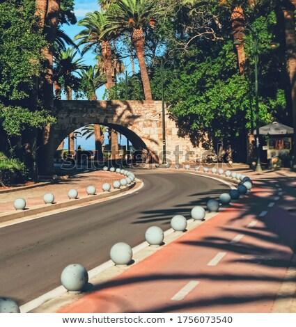 пусто дороги пальмами южный города путешествия Сток-фото © Anneleven
