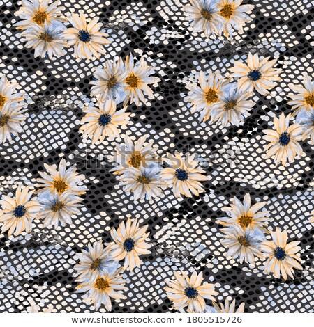 Rumianek kwiat bezszwowy tekstury tkaniny Daisy Zdjęcia stock © karandaev