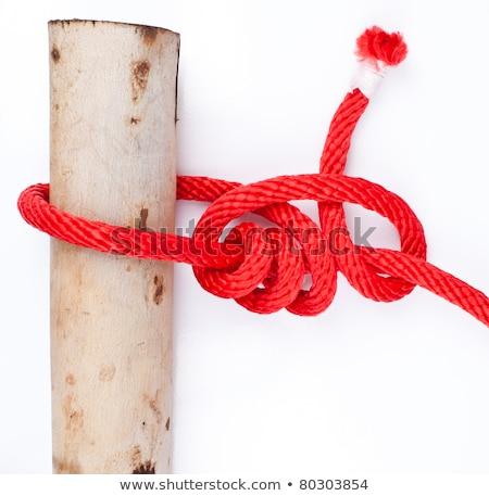 knot series : timber hitch stock photo © koratmember