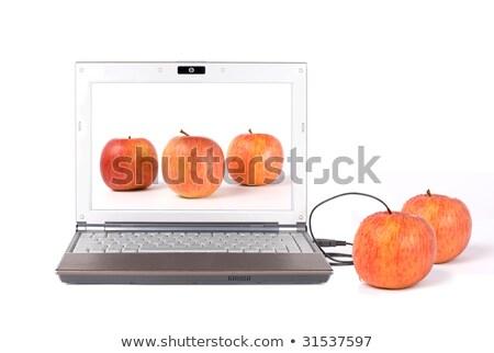 アップロード コピー 本当の リンゴ ノートパソコン ビジネス ストックフォト © Ansonstock
