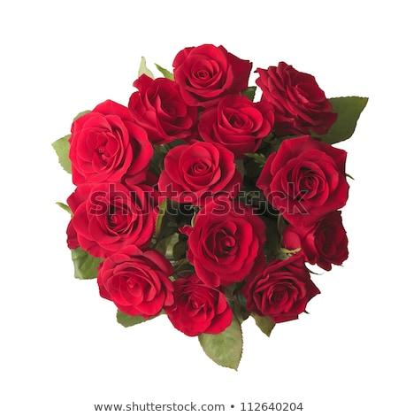 sápadt · citromsárga · rózsa · virágcsokor · izolált · fehér - stock fotó © elenaphoto