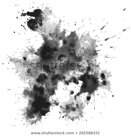 Stock fotó: Vektor · szett · fehér · absztrakt · festék · fekete