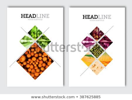 Menu ilustração cobrir restaurante marrom cor Foto stock © nikdoorg