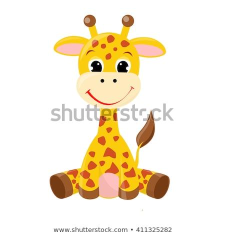 girafa · ilustração · pequeno · engraçado - foto stock © leonido