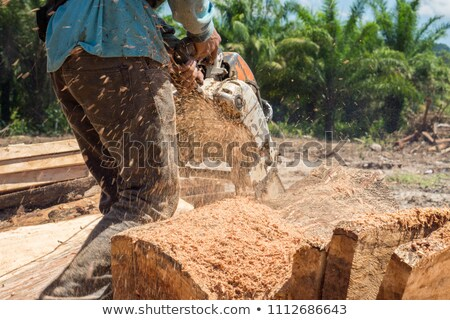 A workman using a chainsaw Stock photo © photography33
