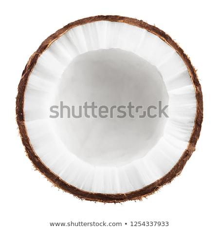 кокосового иллюстрация дизайна белый компьютер Сток-фото © dvarg