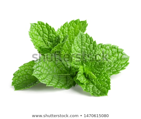 mint Stock photo © Pakhnyushchyy