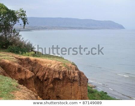 idyllic scenery around Lake Albert in Uganda Stock photo © prill