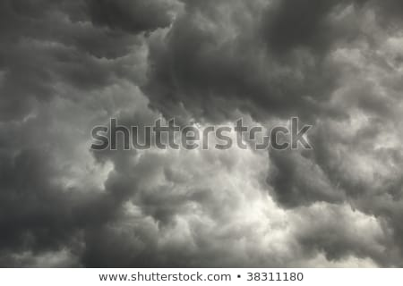 Gloomy sky preceding storm with dark clouds Stock photo © pzaxe
