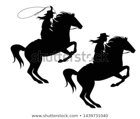 Ridin Cowgirl Stock photo © cboswell