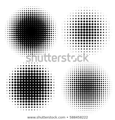 Yarım siyah beyaz model dizayn ışık Stok fotoğraf © jeremywhat