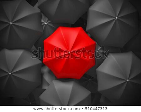 guarda-chuvas · ilustração · voador · tempestade · guarda-chuva · desenho - foto stock © digitalgenetics
