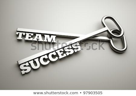 chave · financeiro · sucesso · dinheiro · montanha · empresário - foto stock © lightsource