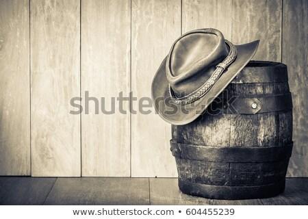 Keresett portré lány western film stílus Stock fotó © vwalakte