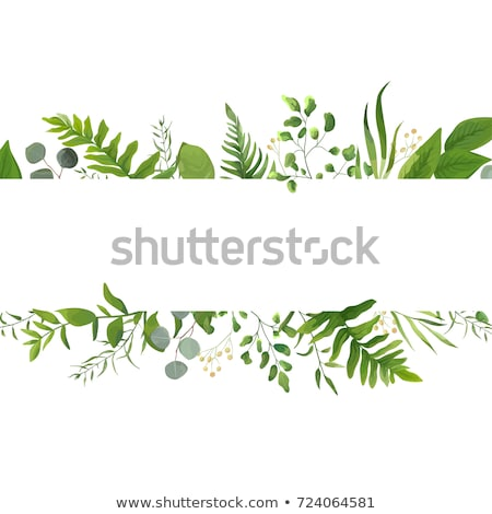 Green Leaves Border Stock photo © cosma