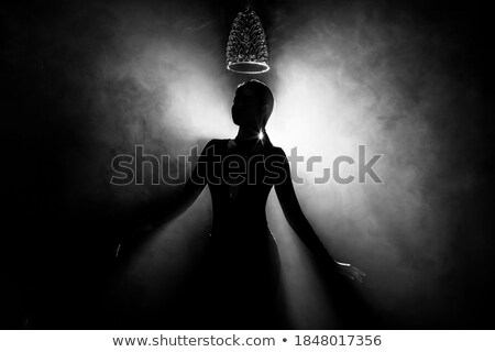 Beautiful shapely woman backlit Stock photo © stryjek