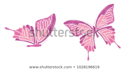 Mariposa pegatinas raso verde negro blanco Foto stock © Allegro