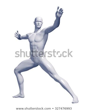 férfi · izmos · anatómia · oldalnézet · illusztráció · oktatási - stock fotó © elenarts