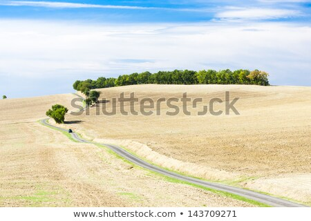 field with a road, Gers Department, France Stock photo © phbcz