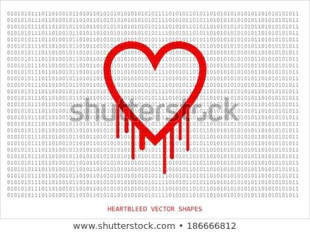 bilgisayar · hacker · kırık · güvenlik · parola · kel - stok fotoğraf © stevanovicigor