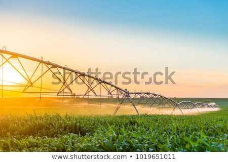 Center Pivot Irrigation System in Cornfield Stock photo © rcarner
