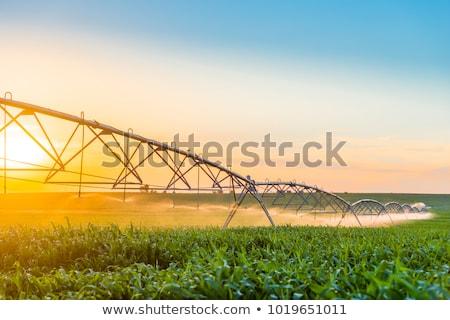 fazenda · campo · irrigação · moderno · água · recentemente - foto stock © rcarner