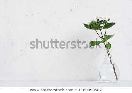 Buket beyaz çiçekler cam vazo gül doğa Stok fotoğraf © art9858